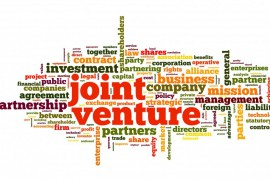 Joint Ventures & Partnerships